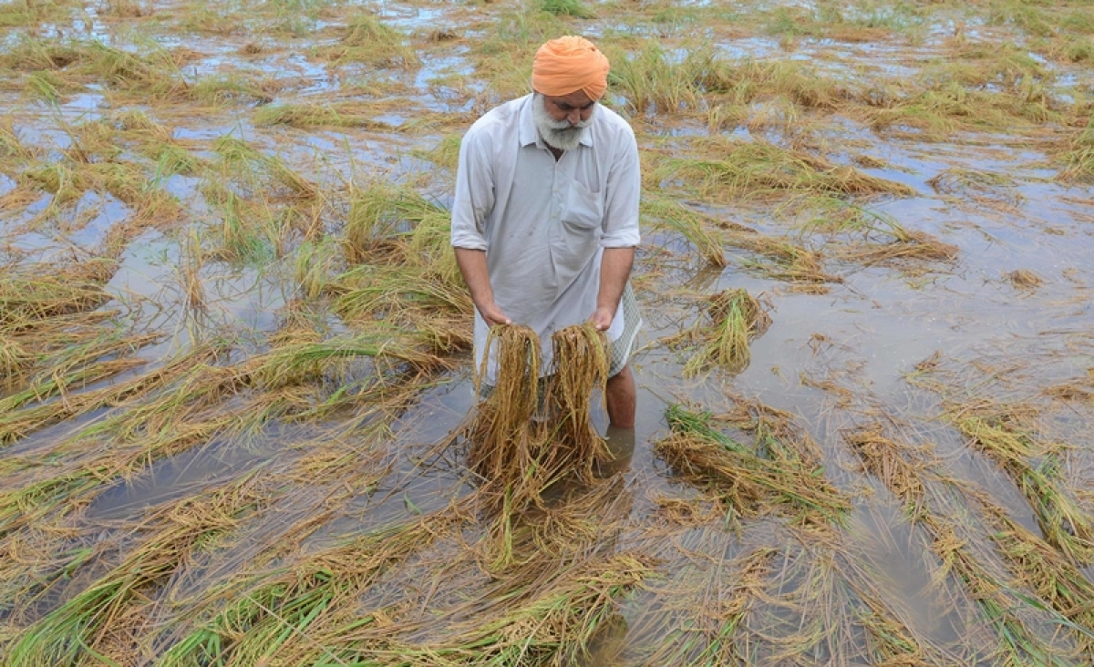 Ujjain: Agriculture science fair concludes