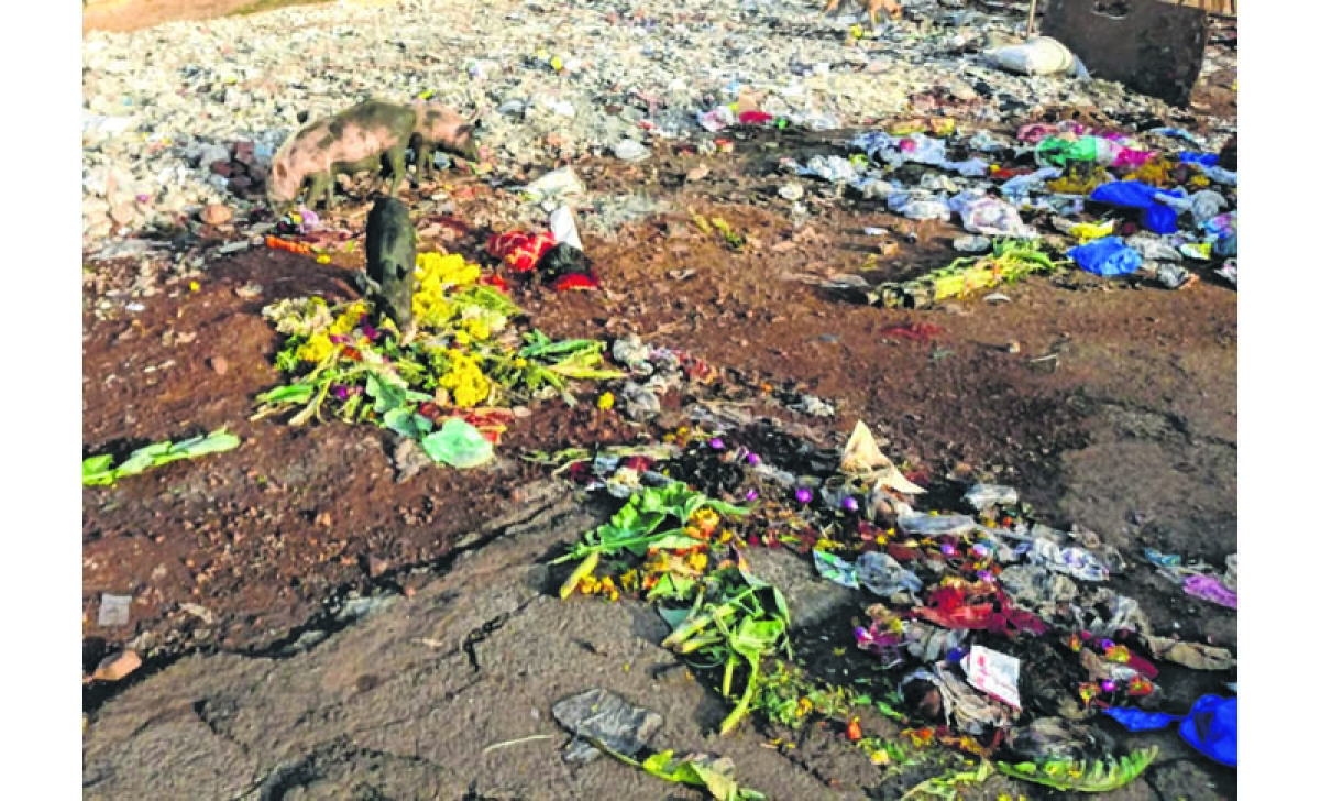 Ganesh Chaturthi 2018: Immersion begins, so does pollution