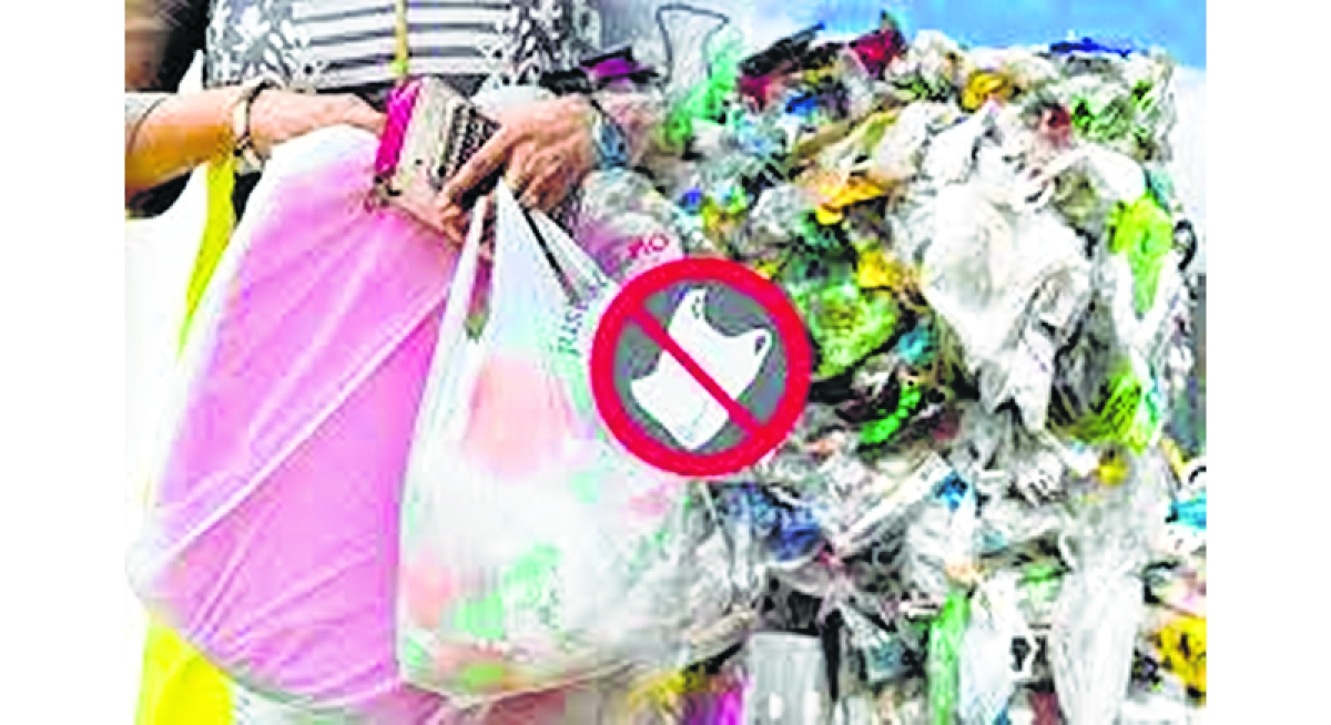 Plastic bags to be banned in Bihar from October 25: State govt to Patna High Court