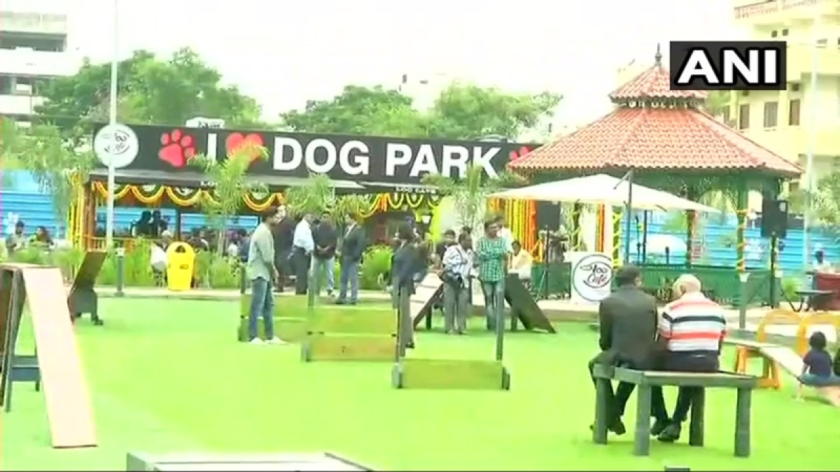 Telangana: India's first dog park opened in Hyderabad
