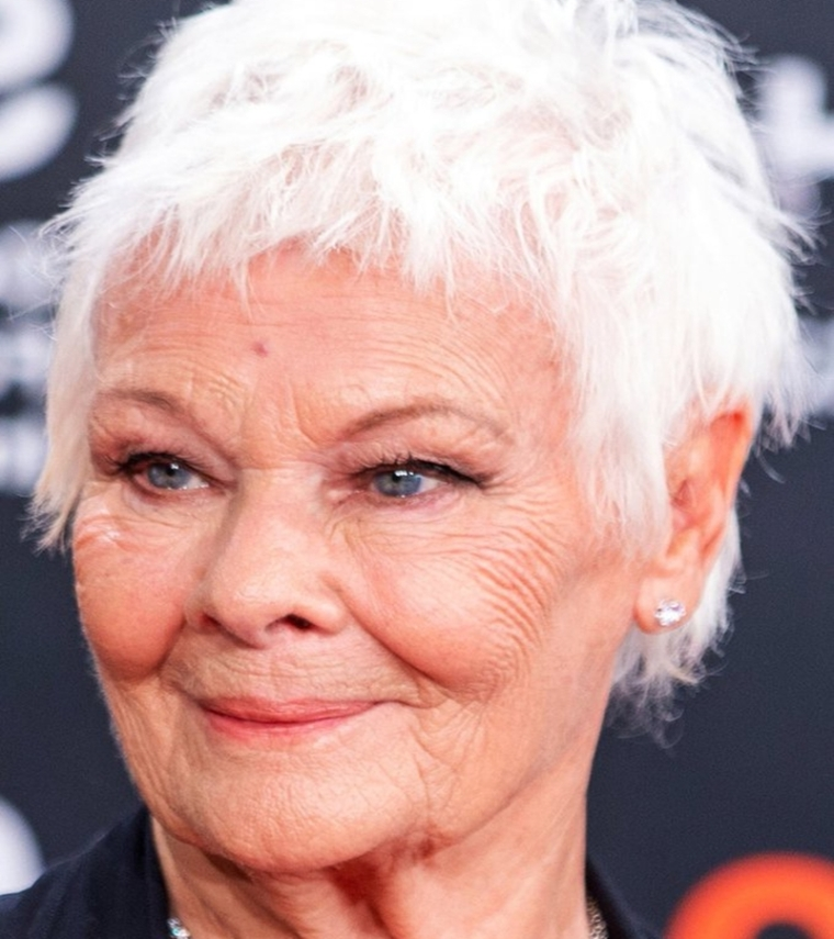 Judi Dench to work in 'Cats' movie adaptation