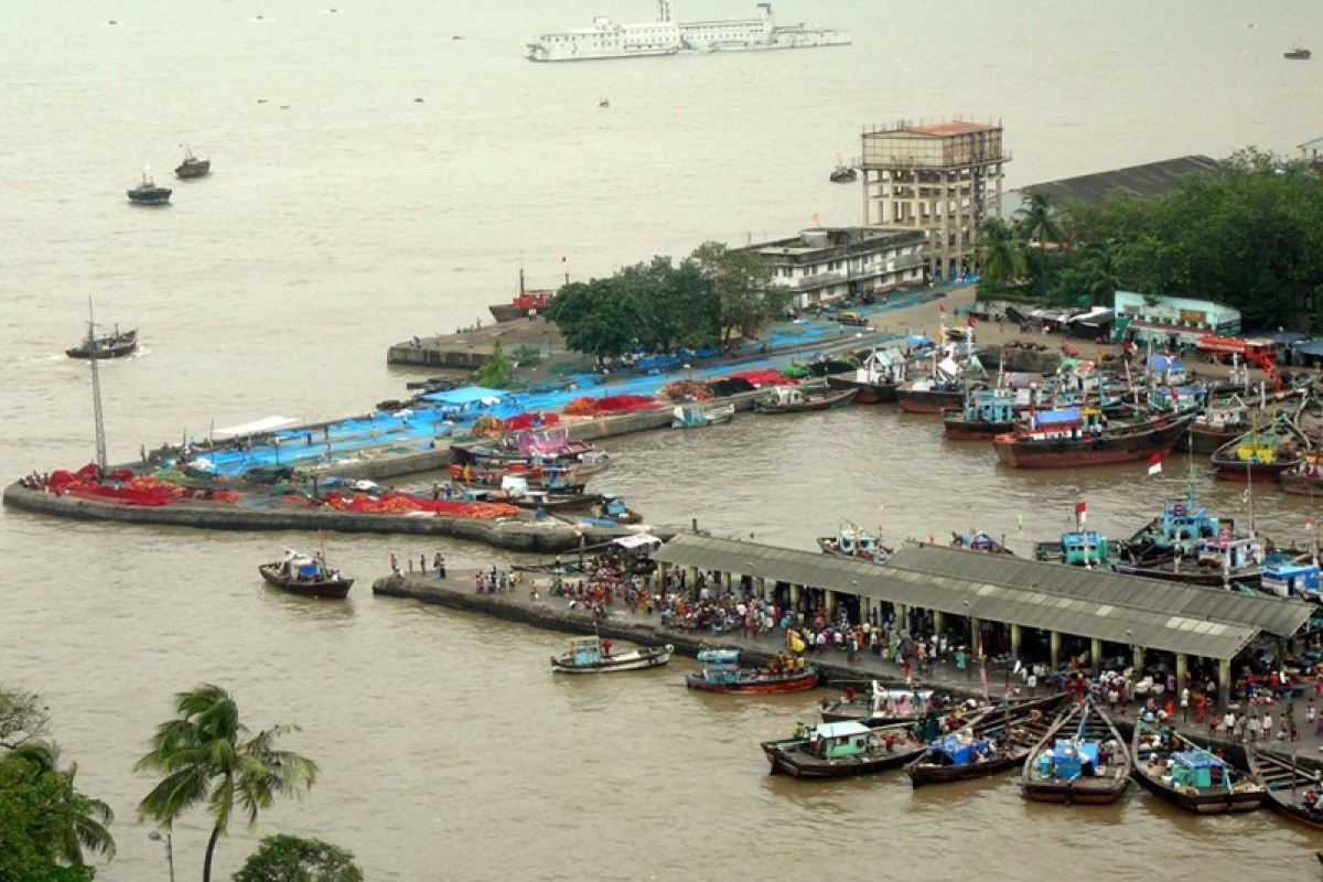 Mumbai: 143-year-old Sassoon Docks to be revamped, will have air-conditioned fish markets
