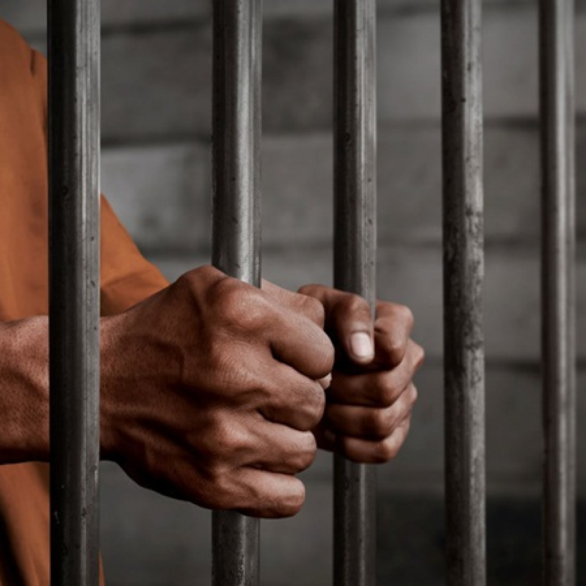 Mumbai: 31-year-old man arrested for killing stray dog in Goregaon
