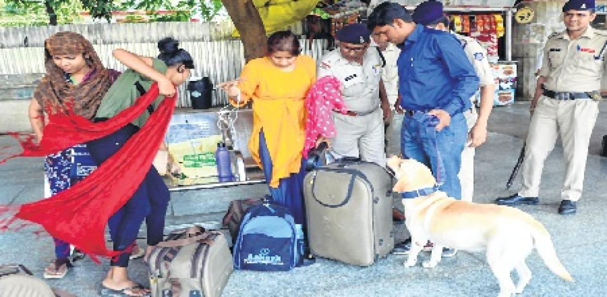 Bhopal: Sniffer dogs deployed as screening system fails