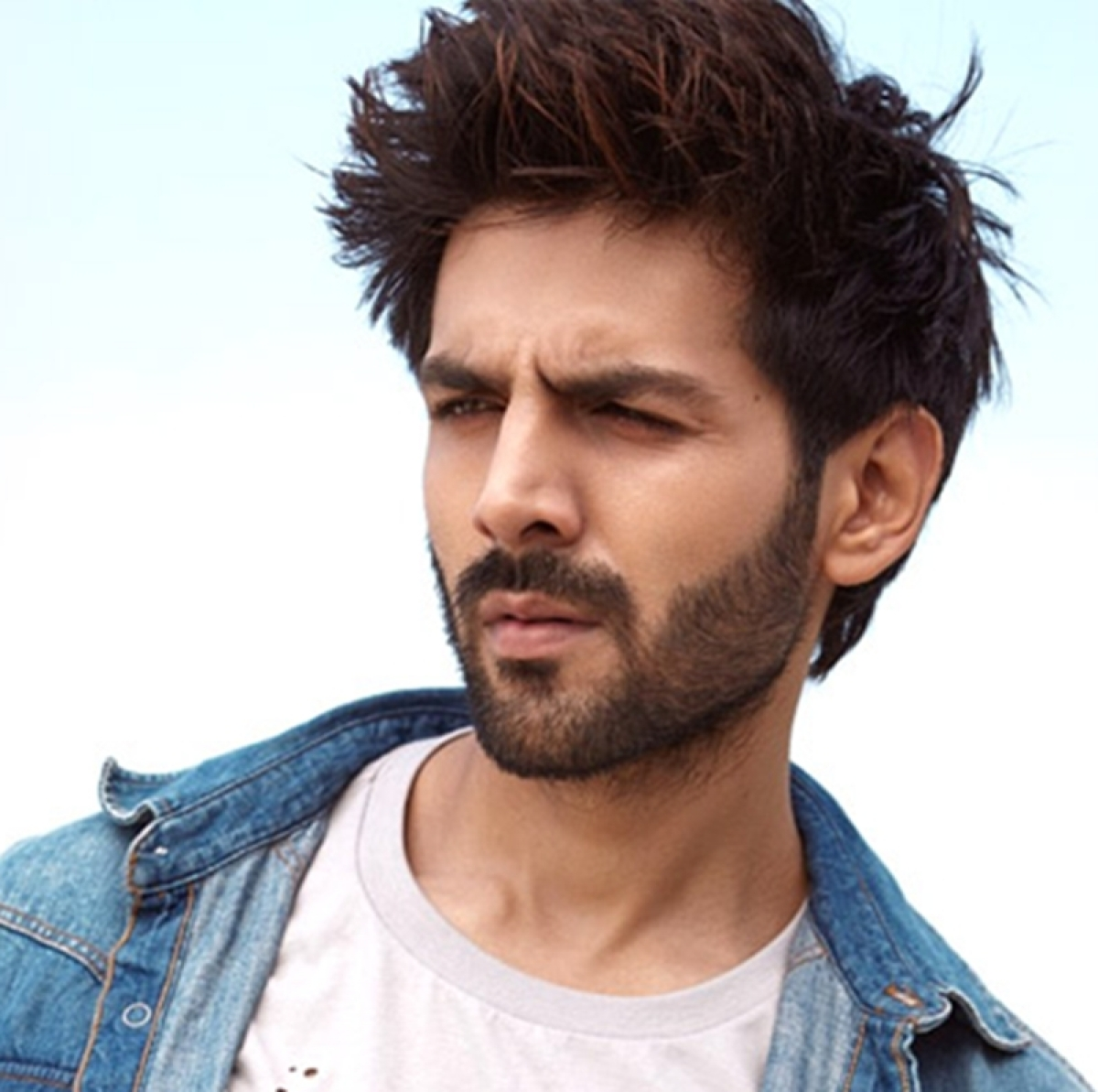Kartik Aaryan starrer Kirik Party remake DELAYED