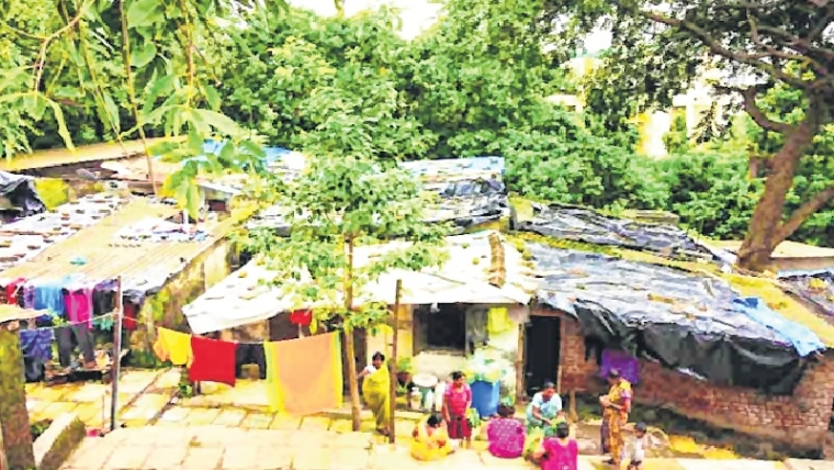 Conduct biometric survey of slum-dwellers: SGNP to SRA