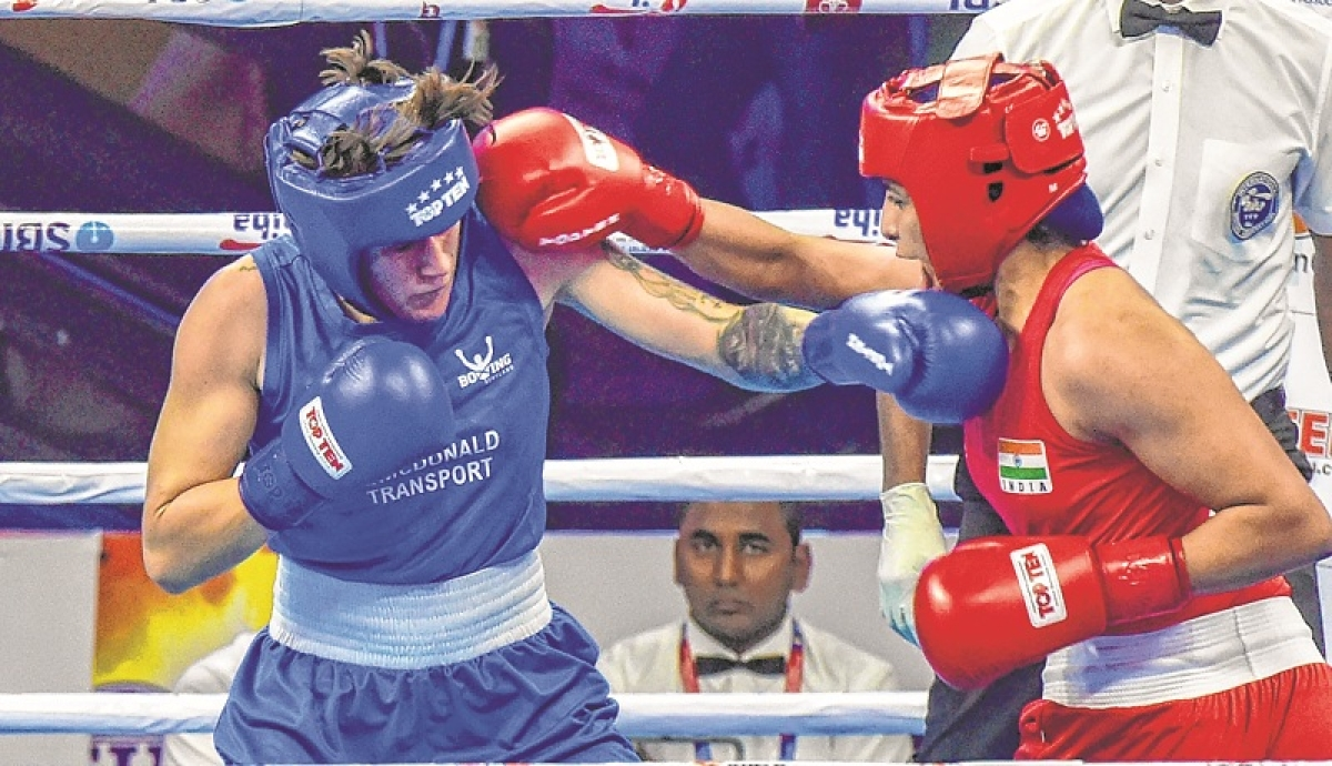World Championship: 8 Indian boxers  in quarter-finals