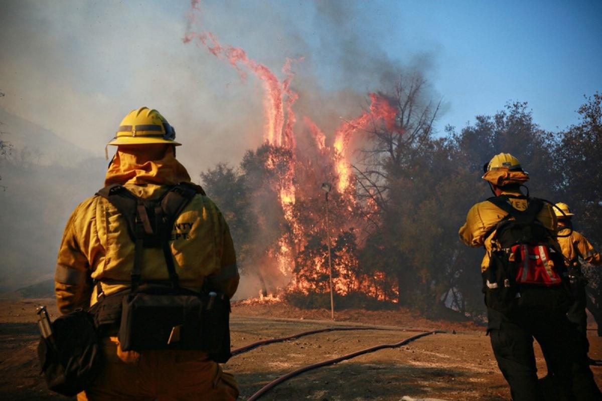 California wildfire death toll rises to 29