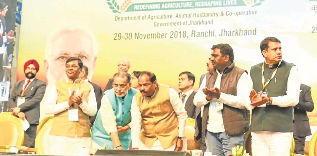 Jharkhand farmers to get interest-free loans for one year: CM Raghubar Das