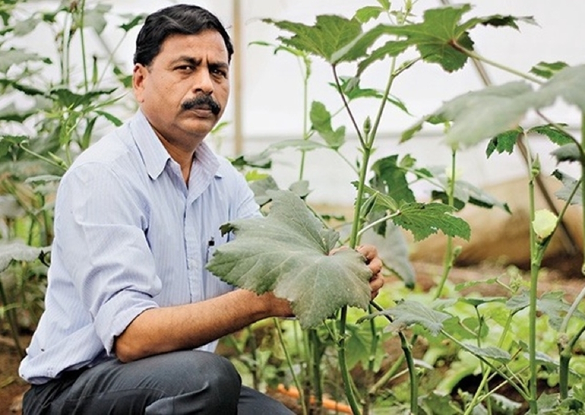TEDxGateway 2018! Dnyaneshwar Bodke: The visionary farmer behind Abhinav Farmers Club