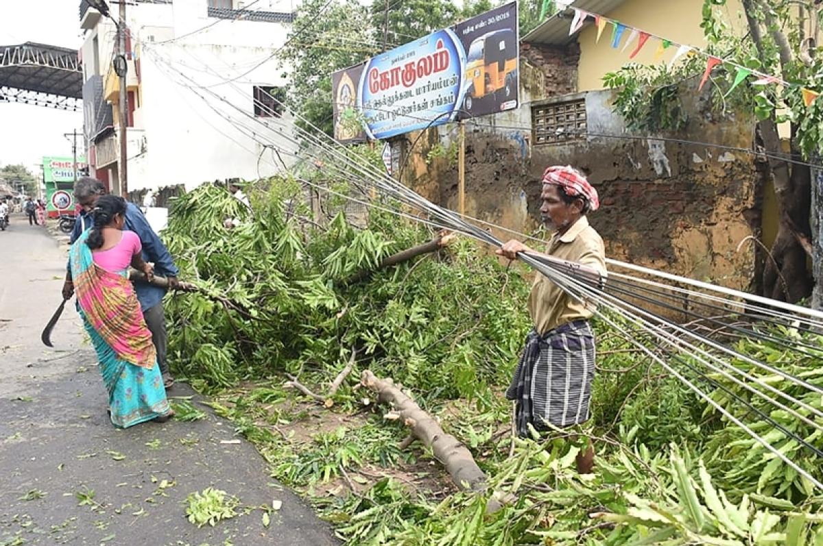 Cyclone Gaja: 11 people dead in Tamil Nadu, CM Palaniswami announces compensation
