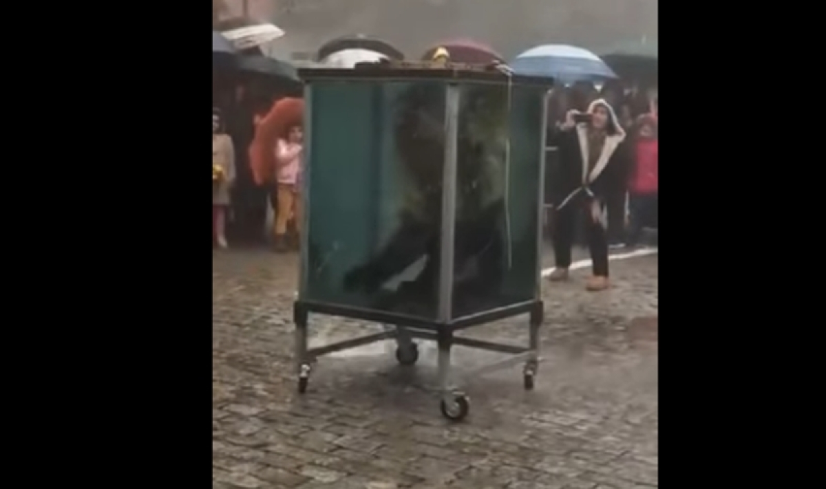 Stunt Gone Wrong! Magician loses consciousness while performing act in water tank; watch video