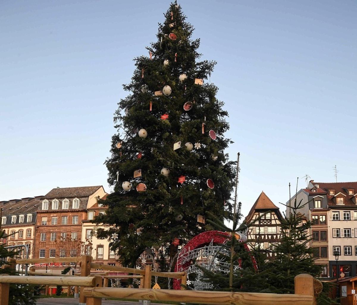 Government shutdown: US National Christmas Tree 'to remain dark'