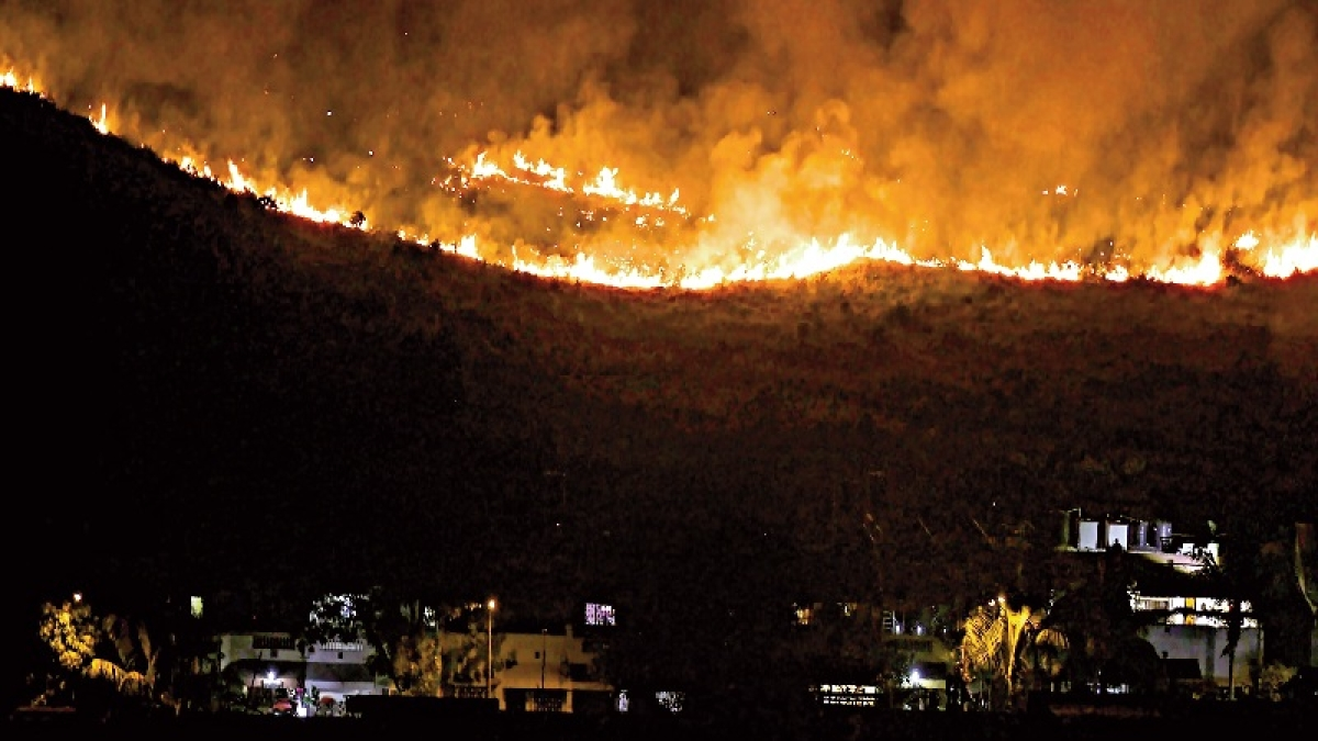 Mumbai: Massive fire breaks out in Aarey forest near Infinity IT Park; 100 firemen, ten fire engines rushed to spot