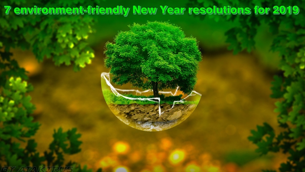 Here are 7 environment-friendly New Year resolutions for 2019
