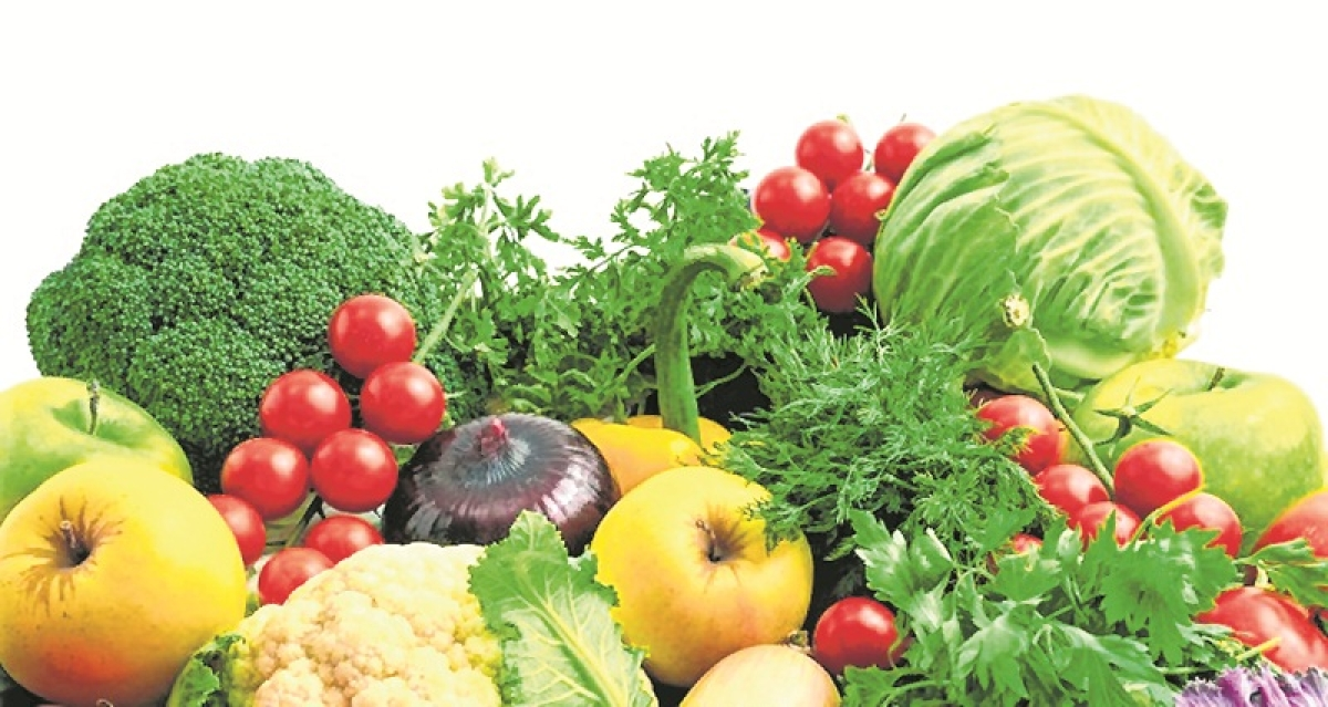 High-fibre diet is gateway to preventing non-communicable diseases