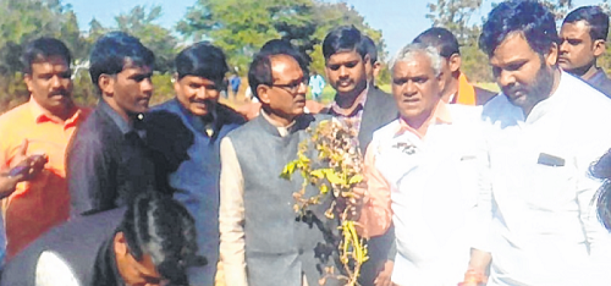 Ujjain: Government should provide immediate relief to farmers