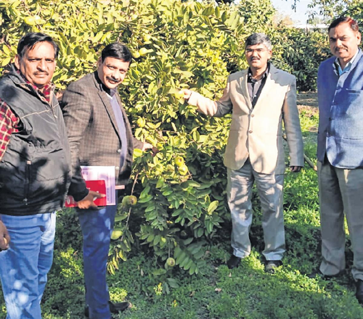 Ujjain: Collector reviews preparations for Somvati Amavasya
