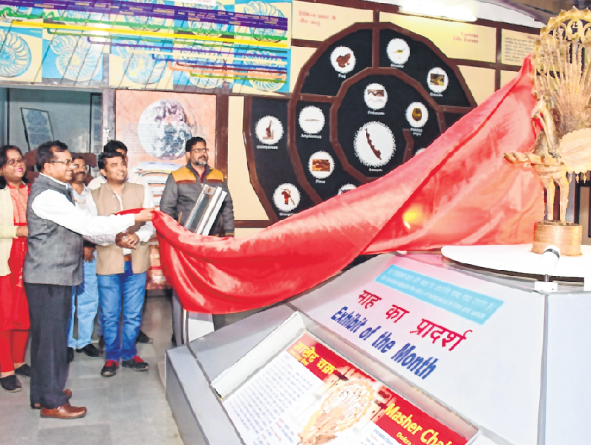 Bhopal: West Bengal 'Masher Chakra' exhibited at IGRMS