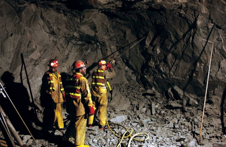Carol Andrade Column: Of Meghalaya mining tragedy and rodent heaven