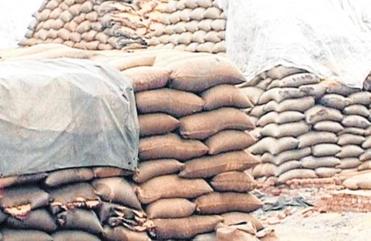Bhopal: No more bonus to farmers on wheat procurement