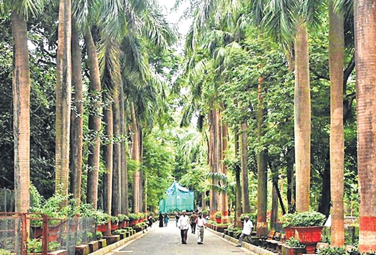 Byculla zoo to get new exotic animals