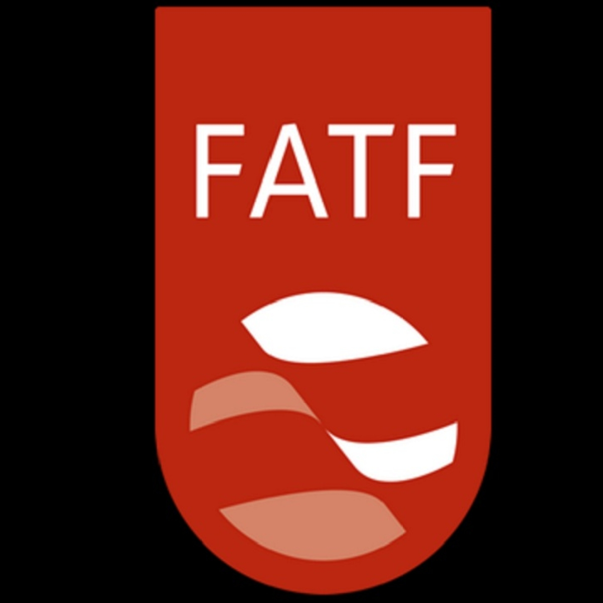 3 reviews to determine Pakistan's place on FATF list