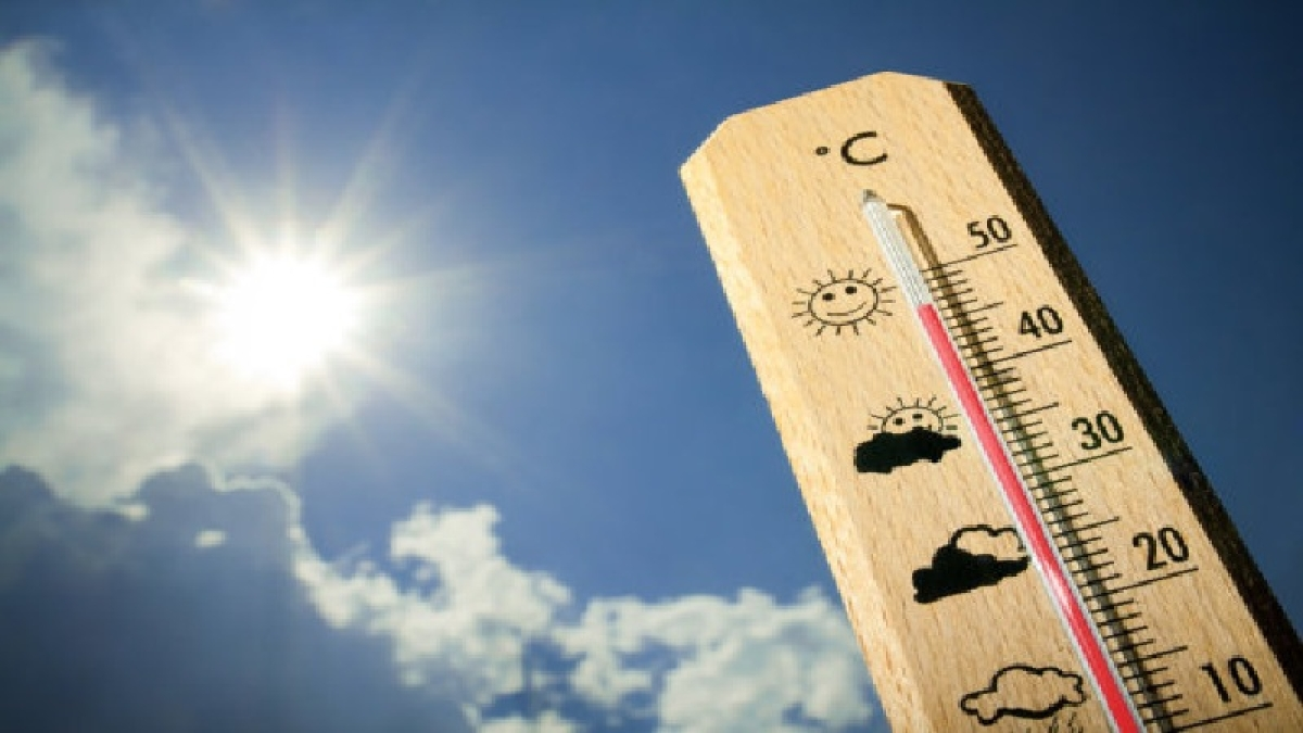 Indore: Hot winds keep mercury high