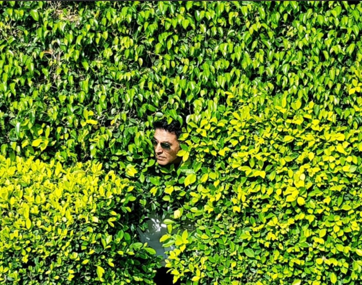 Netizens create a meme frenzy as Akshay Kumar hides in green bushes post 'Kesari' release