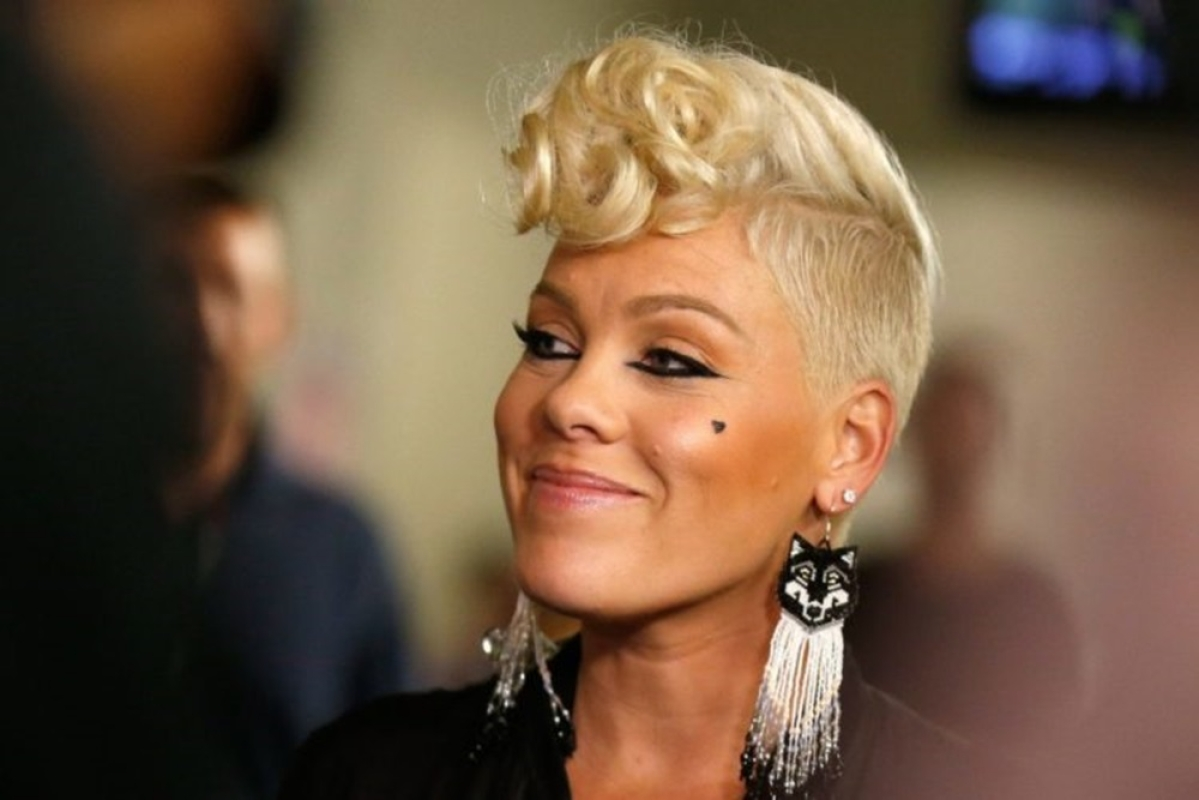 Singer Pink slams trolls for criticising son, Jameson Moon's photo