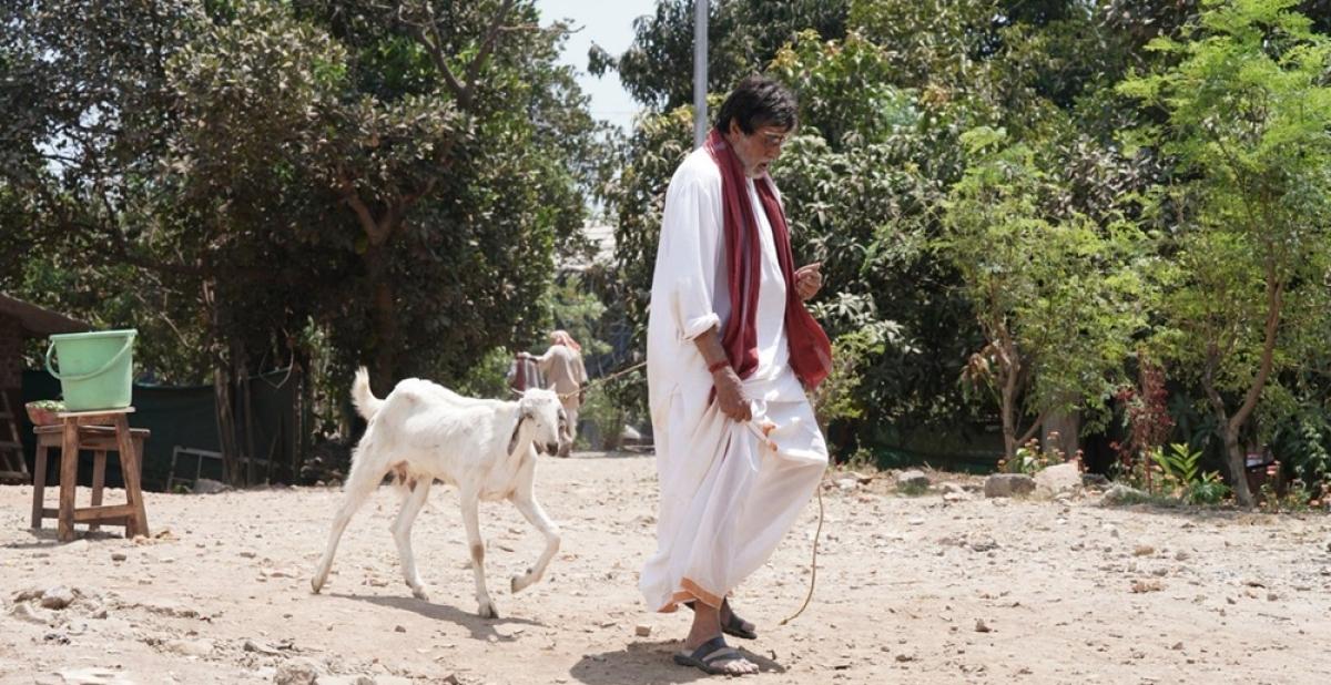 Big B 'walks' goat after Twitter banter with SRK on Badla's success party