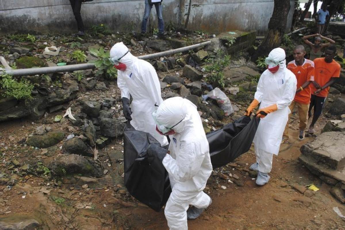 Ebola outbreak: Death toll breaches 650-mark in DR Congo