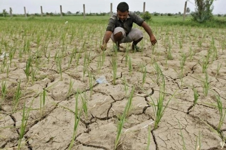 Agrarian crisis, water scarcity deciding factors in Dindori constituency this Lok Sabha elections