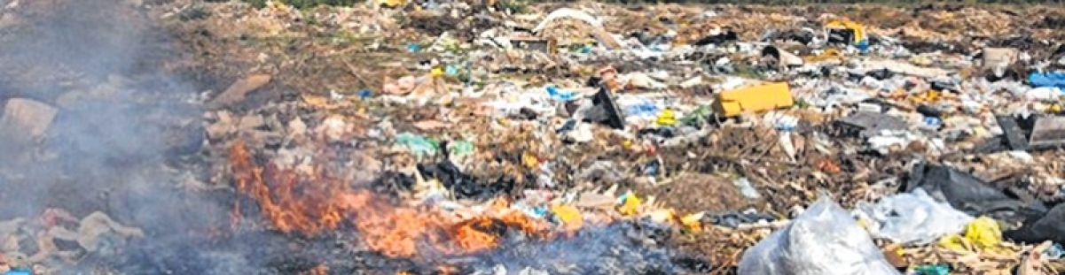 Dumping of garbage on Deonar ground: Brihanmumbai Municipal Corporation approaches Bombay High Court