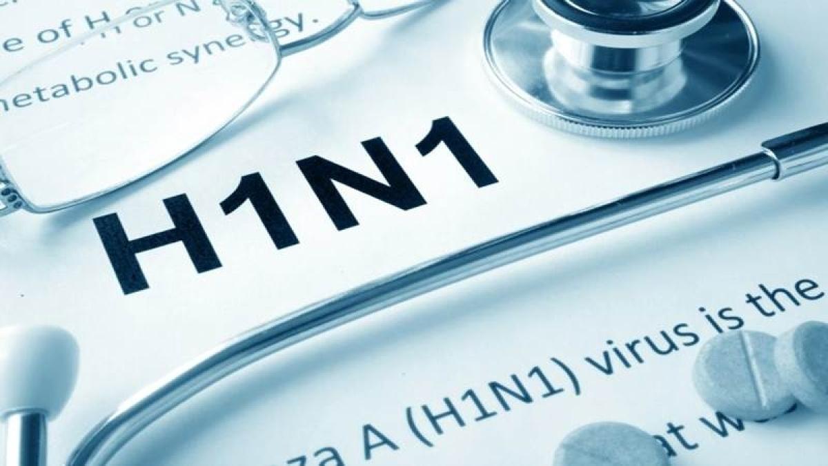 Two swine flu deaths in March: BMC