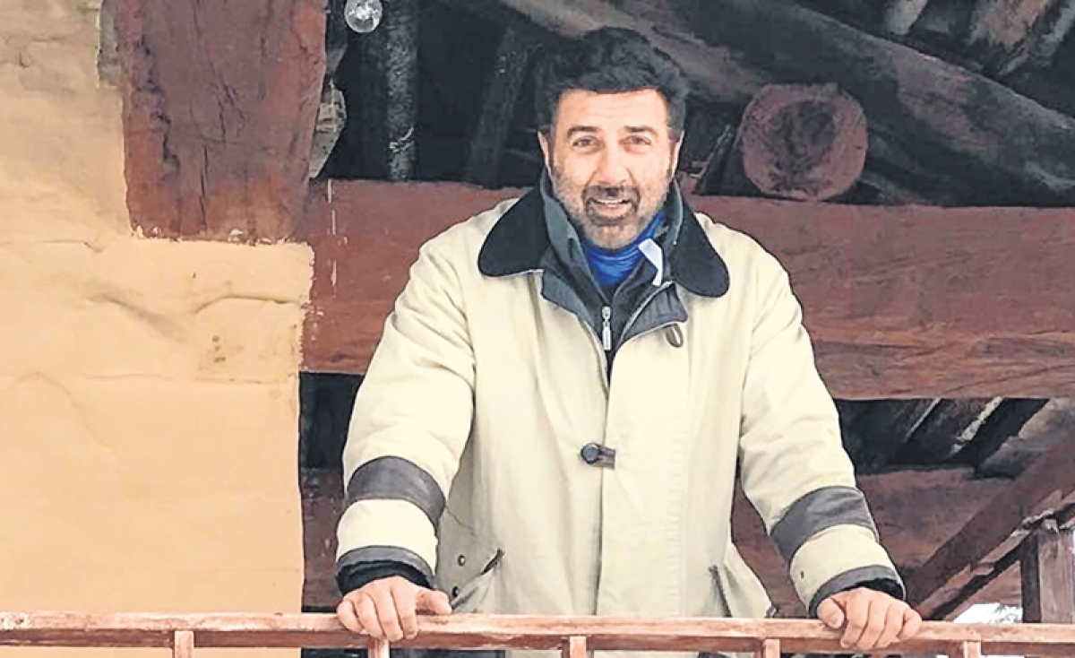 Sunny Deol loves a good fight