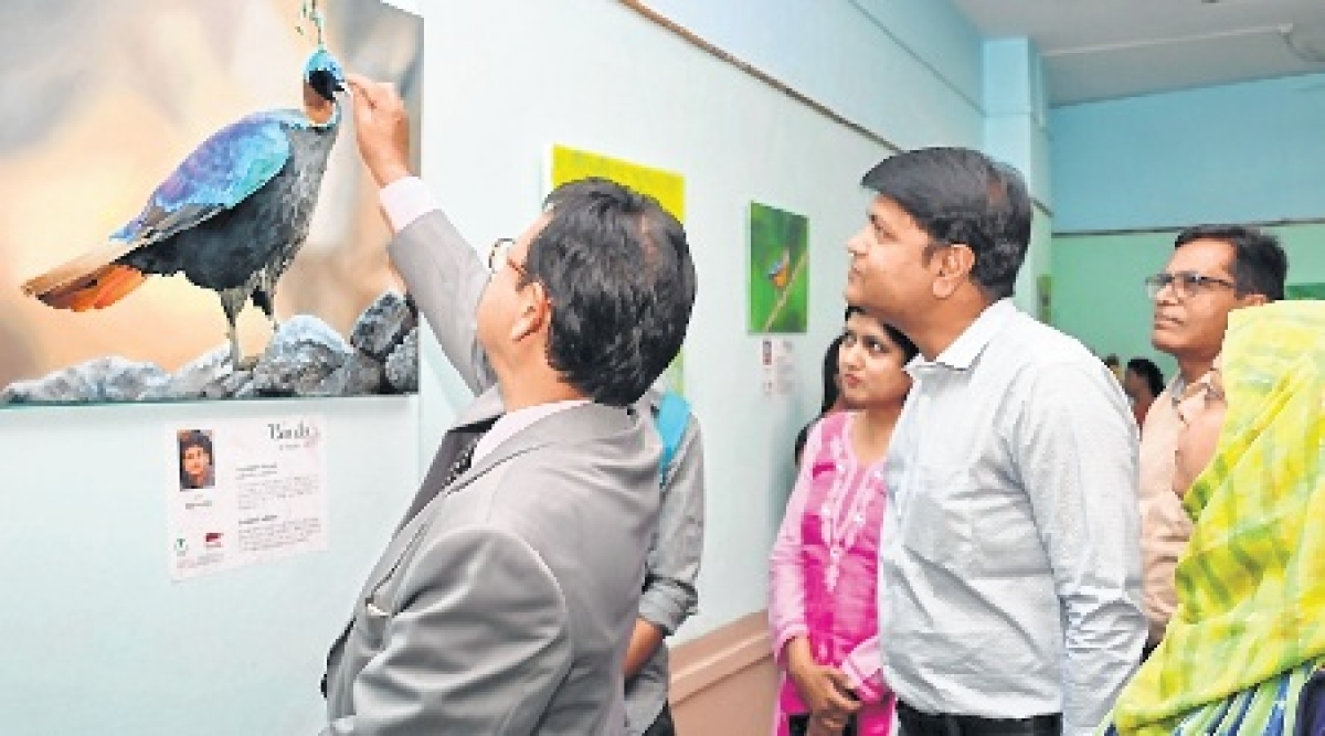 Bhopal: Exhibition on birds of India at RMNH