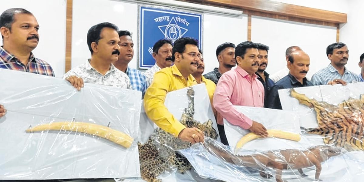 Mumbai: Malad man held for illegal possession of animal skins worth Rs 40 lakh