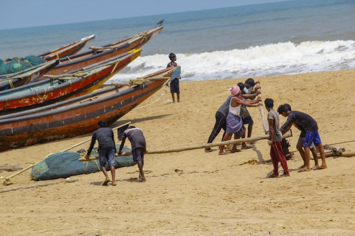 Low yields force large-scale migration of Kerala fishermen