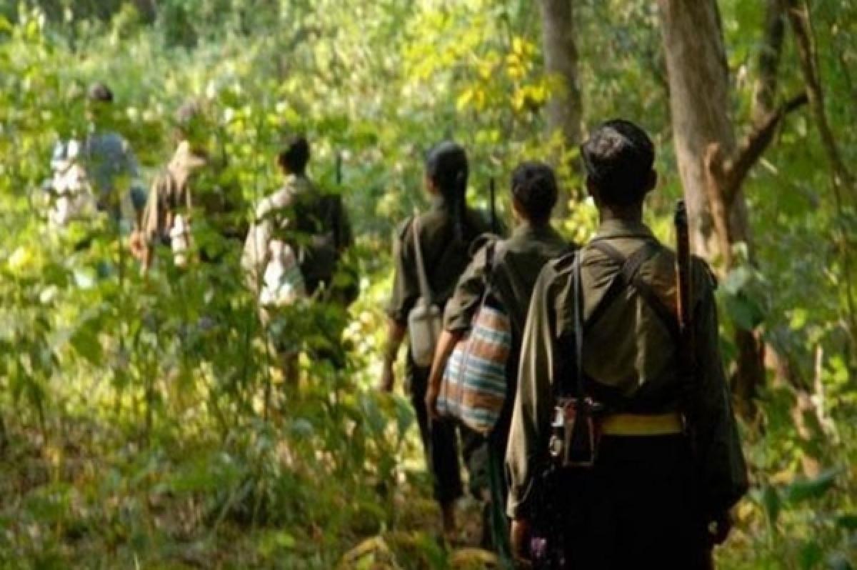 Gadchiroli Naxals exploiting government lapses