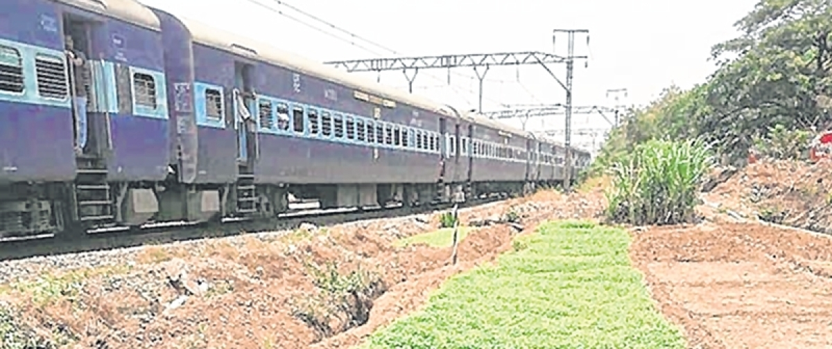 Ensure contaminated water is not used for cultivation along tracks: Bombay High Court to Railways