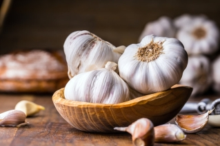 Garlic: Its Many Benefits To HIV Patients