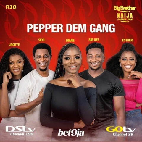 "Big Brother Naija ""Pepper Dem Gang"""