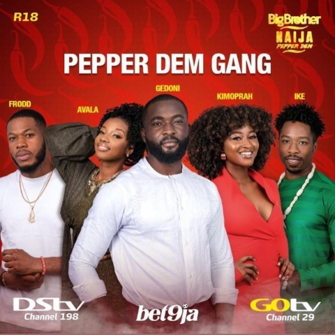 Big Brother Naija season 4