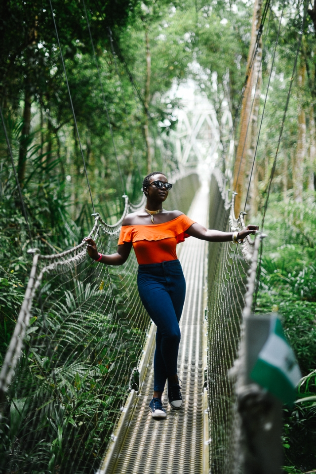 The Famous Canopy Walk at the Lekki Conservation Centre