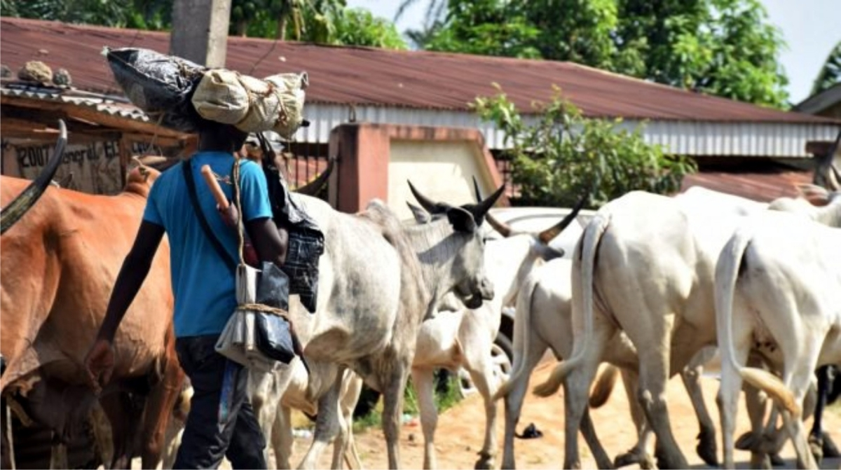 We Have No Land For Ruga Settlement -South East Governors