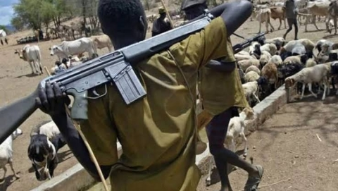You Don't Own Bushes, We Must Settle In Your States – Herdsmen To South East Governors