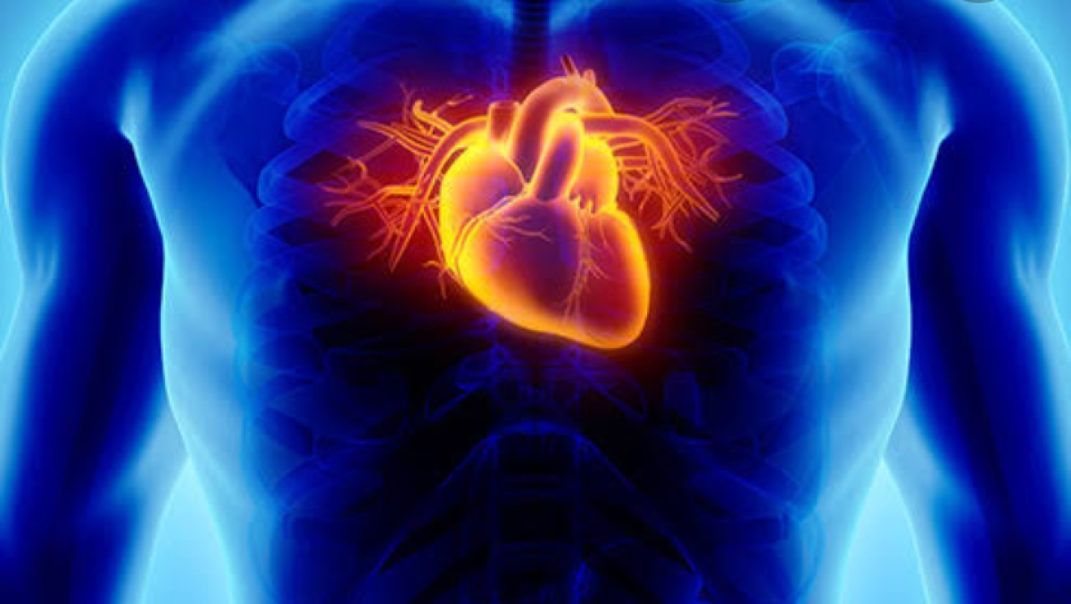 9 Common Habits That Can Harm Your Heart