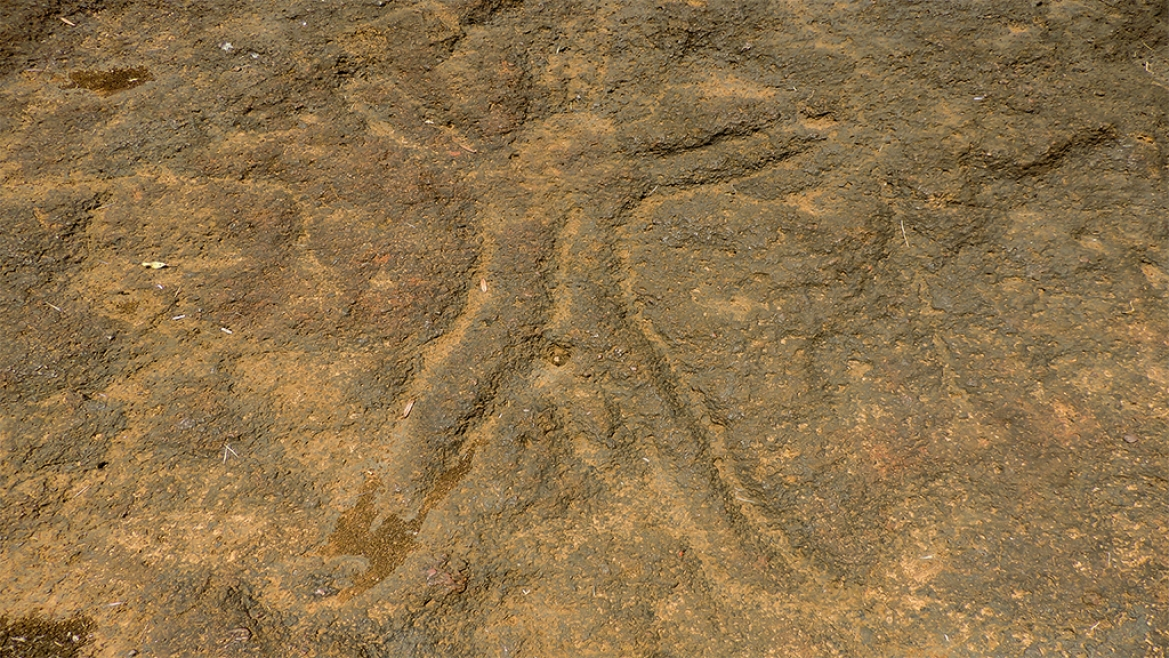 Human figure at Pansaimol