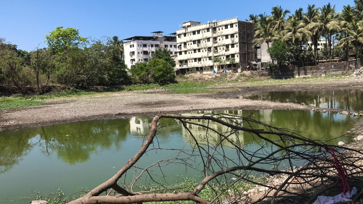 This dried up lake, was a part of the bustling Sopara port, once upon a time